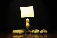 Protesto do amendoim Amendoim que guarda um cartaz vazio Fotografia de Stock