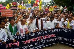 Protesto maciço de Satyagraha fotografia de stock royalty free