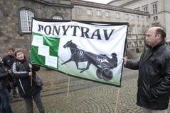 PROTESTO POR ESPORTES DO CAVALO Fotografia de Stock Royalty Free