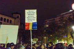 Protesto romeno 09/11/2015 Foto de Stock Royalty Free