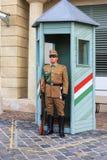 Protetor cerimonial no palácio presidencial Imagens de Stock Royalty Free
