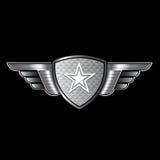 Protetor com asas e estrela ilustração royalty free