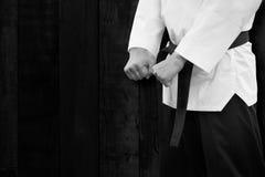 Protetor coreano tradicional do suporte do lutador de Taekwondo Foto de Stock Royalty Free