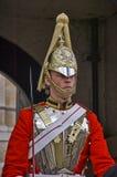 Protetor de cavalo Imagem de Stock Royalty Free