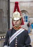 Protetor de cavalo de Londres Foto de Stock