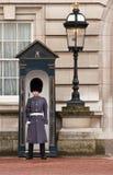 Protetor de palácio Fotos de Stock Royalty Free