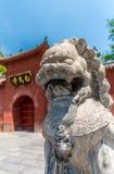 Protetor do leão Imagem de Stock Royalty Free