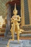 Protetor dourado Fotografia de Stock Royalty Free