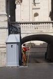 Protetor papal suíço Imagens de Stock