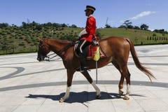 Protetor real com cavalo Imagem de Stock Royalty Free