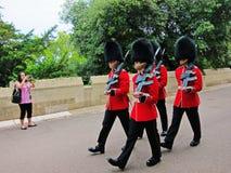 Protetores da rainha no revestimento vermelho Imagem de Stock Royalty Free