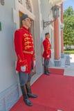 Protetores de palácio azuis imagem de stock royalty free