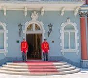 Protetores de palácio azuis de Cetinje fotografia de stock