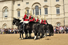 Protetores de Queen´s em cavalos Foto de Stock Royalty Free