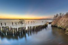 Protezione avariata della banca sulla riva del lago Fotografia Stock