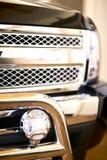 Protezione della griglia del camion Immagini Stock Libere da Diritti