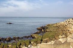 Protezione della linea costiera facendo uso dei blocchi in calcestruzzo Fotografie Stock