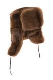 Protezione della pelliccia Fotografia Stock