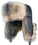 Protezione della pelliccia immagini stock libere da diritti
