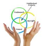 Protezione della proprietà intellettuale immagine stock