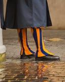 Protezione dello svizzero in pioggia Fotografia Stock Libera da Diritti