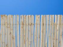 Protezione di bambù del sole del compagno della canna Cielo blu nel fondo Fotografie Stock