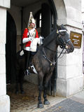 Protezione di cavallo Fotografia Stock Libera da Diritti