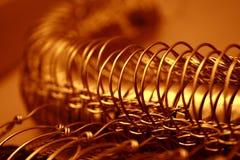 Protezione di Champagne Fotografie Stock Libere da Diritti
