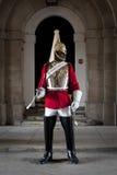 Protezione di condizione del soldato nelle protezioni di cavallo a Londra Fotografia Stock Libera da Diritti