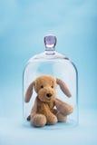 Protezione di infanzia Fotografia Stock