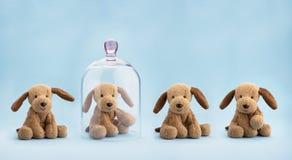 Protezione di infanzia Immagine Stock