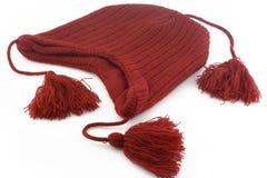 Protezione di lana Fotografia Stock