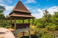 Protezione forestale e turista di Tha Pom Klong Song Nam Mangrove Fotografia Stock