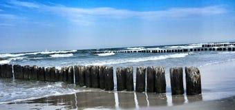 Protezione frangivento dei tronchi sul mare Fotografie Stock Libere da Diritti