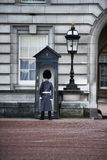 Protezione reale al Buckingham Palace Fotografia Stock Libera da Diritti
