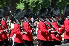 Protezione reale britannica Fotografie Stock Libere da Diritti