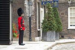 Protezione reale di Londra Fotografie Stock