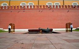 Protezioni di onore vicino alla parete del Kremlin, Mosca Fotografie Stock