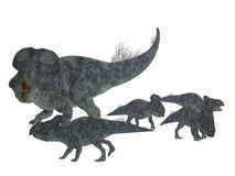 Protoceratops Mother with Offspring. Protoceratops was a herbivorous Ceratopsian dinosaur that lived in Mongolia in the Cretaceous Period Stock Image