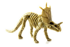Protoceratops Royalty Free Stock Photos
