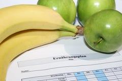 Protocollo nutrizionale Immagine Stock