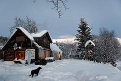 Protokoll-Kabine in den wilds mit schwarzem Hund Lizenzfreie Stockfotografie