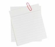 Protokollanmerkungen mit roter Papierklammer Lizenzfreie Stockfotos
