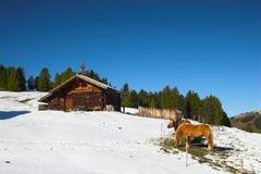 Protokollhaus in den Alpen lizenzfreies stockfoto