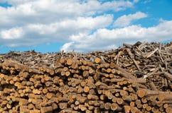 protokollieren Destruktive Natur der Industrie lizenzfreies stockfoto