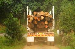 Protokollierender LKW voll des Bauholzes stockbild