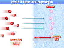 Proton Radiation Path Length (3d illustration). Proton Radiation Path Length 3d Royalty Free Stock Photos