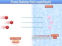 Proton Radiation Path Length (3d illustration) Stock Photo