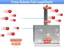 Proton-Strahlungs-Weg-Länge u. x28; 3d illustration& x29; lizenzfreie abbildung