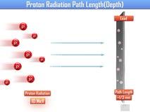 Protonowa napromienianie ścieżki długość & x28; 3d x29 illustration&; Zdjęcie Stock